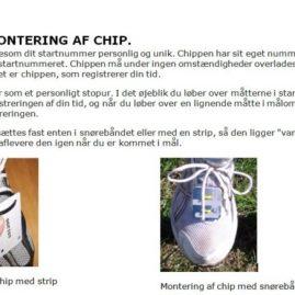 Montering Af Chip
