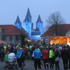 World Diabetes Run – 14. November 2014
